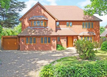 Forest Road, East Horsley KT24. 6 bed detached house
