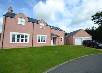 Thumbnail 4 bed detached house for sale in Nant Y Ffynnon, Letterston, Haverfordwest