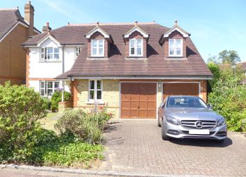 Thumbnail 5 bed detached house to rent in The Wilderness, East Molesey
