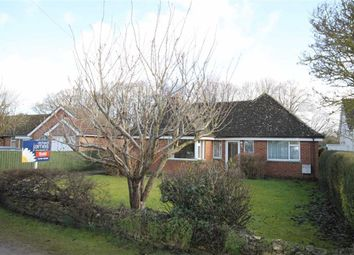 Thumbnail 3 bed detached bungalow for sale in Star Lane, Watchfield, Oxfordshire