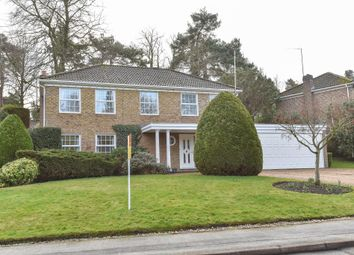 Thumbnail 4 bedroom detached house to rent in Herons Court, Lightwater