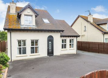 Thumbnail 4 bed detached house for sale in Clanmaghery Grove, Ballykinler, Downpatrick, County Down