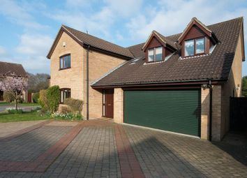 Thumbnail 5 bed detached house for sale in Meadway, Cringleford, Norwich