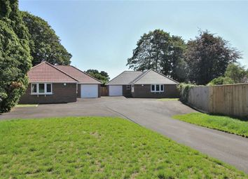 Thumbnail 3 bed detached bungalow to rent in Amberwood Drive, Walkford, Christchurch