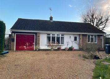 Thumbnail 3 bed detached bungalow to rent in Meesden, Buntingford