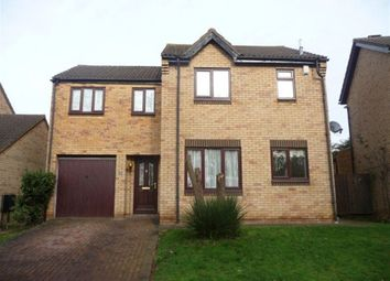 Thumbnail 4 bed property to rent in Barn Owl Close, Northampton