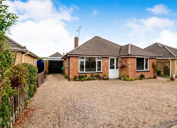 Thumbnail 3 bed bungalow for sale in Cowplain, Hampshire, England