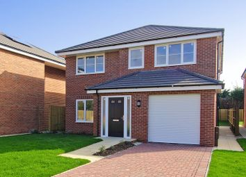 Thumbnail 4 bed detached house for sale in North Bersted Street, Bognor Regis