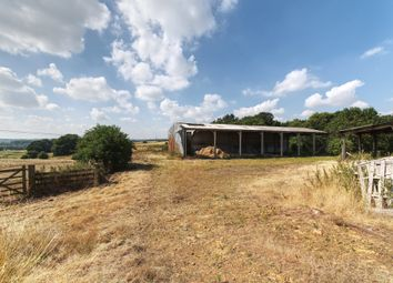 Thumbnail Barn conversion for sale in Brixworth, Northamptonshire