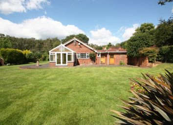Thumbnail 4 bedroom detached bungalow to rent in Sparrow Row, Chobham