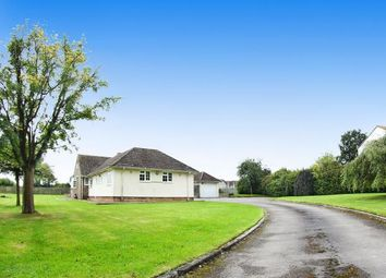 Thumbnail 3 bed bungalow to rent in The Paddocks, Duck Street, Tytherington, South Gloucestershire