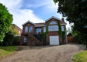 Thumbnail 4 bed detached house to rent in Brinkhill, Louth