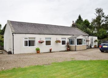 Thumbnail 4 bed detached bungalow for sale in Holly Cottage, Tow House, Bardon Mill