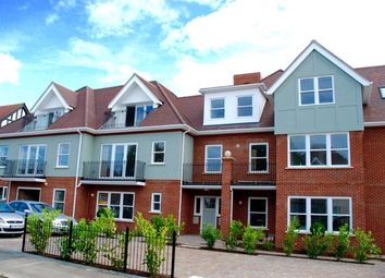Thumbnail 2 bed flat for sale in Harold Grove, Frinton-On-Sea