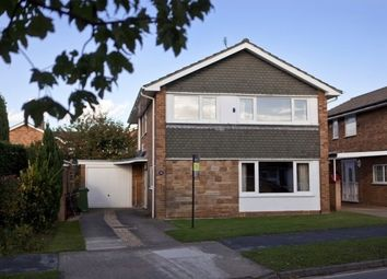 Thumbnail 4 bed detached house to rent in Deramore Drive, Badger Hill, York