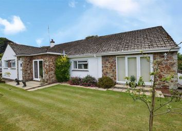 6 bed detached bungalow for sale in Orchard Close, Galmpton, Galmpton, Brixham TQ5