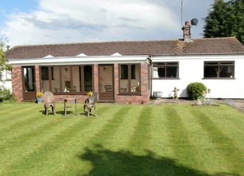 Thumbnail 2 bed bungalow to rent in Bulkington Lane, Nuneaton
