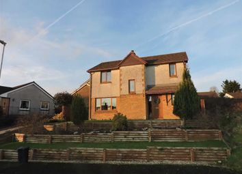 Thumbnail 4 bed detached house for sale in Y Gorsedd, Ammanford