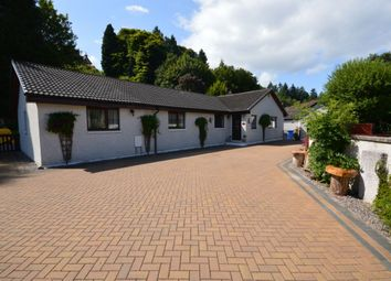 Thumbnail 5 bed bungalow for sale in Drummond Crescent, Inverness