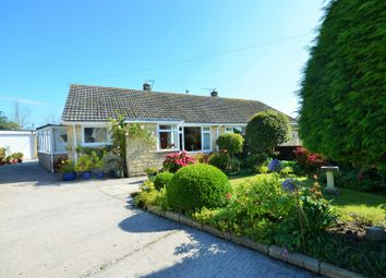 Thumbnail 2 bed semi-detached bungalow for sale in Kentisworth Road, Marnhull, Sturminster Newton
