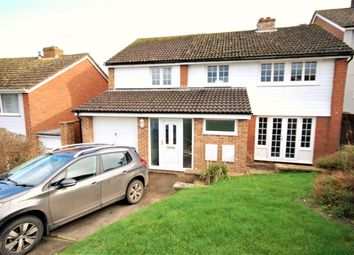 Thumbnail 4 bed detached house to rent in Grove Hill, Colyton