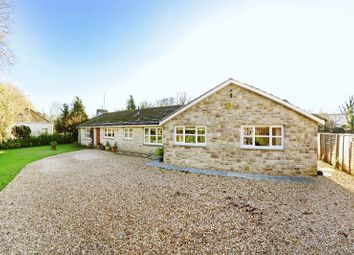 Thumbnail 5 bed bungalow for sale in Main Street, Broadmayne