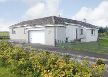 Thumbnail 4 bed detached bungalow for sale in Hill Of Forss, Thurso