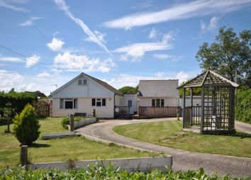 Thumbnail 3 bed detached bungalow for sale in Courtenay Road, Dunkirk, Faversham