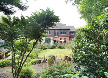 Thumbnail 4 bed detached house for sale in Ambleside Avenue, Streatham, London