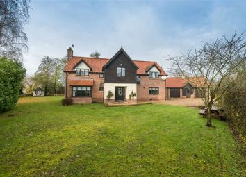 Thumbnail 5 bed detached house for sale in Low Common, Bunwell, Norwich, Norfolk