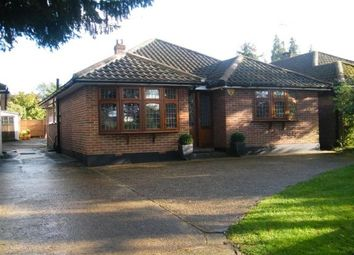 Thumbnail 3 bed bungalow to rent in Stock Road, Billericay