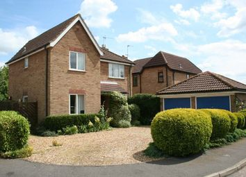 Thumbnail 4 bedroom detached house to rent in Thirlby Gardens, Ely