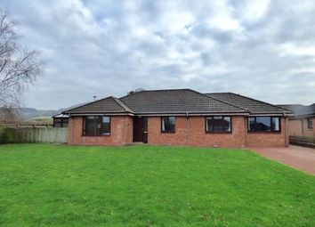 Thumbnail 4 bed detached bungalow for sale in Dryfe Park, Lockerbie, Dumfries And Galloway