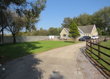 Thumbnail 4 bed detached bungalow for sale in Pembrey, Burry Port