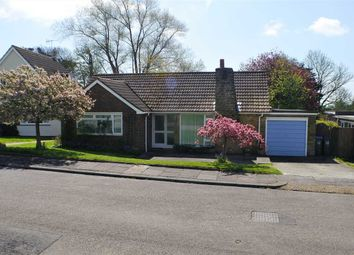 2 bed bungalow for sale in Hayling Gardens, Worthing BN13