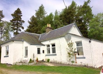 Thumbnail 3 bed detached house to rent in Upper Hillside Cottage, Persie Estate, Bridge Of Cally, Blairgowrie, Perth And Kinross