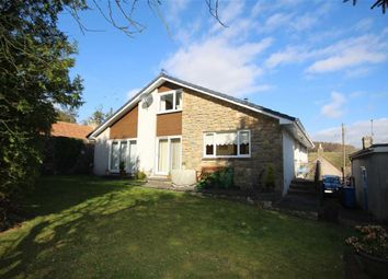 Thumbnail 4 bedroom detached house for sale in Braefoot House, Old Mill Road, Craigrothie, Fife