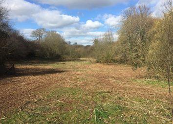 Thumbnail Land for sale in Netherton, Newton Abbot, Devon