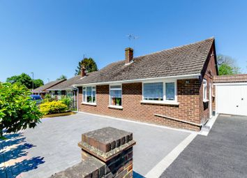 Thumbnail 3 bed bungalow for sale in Aldershot Road, Guildford