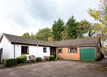 Thumbnail 5 bed bungalow for sale in Glenmore, Clayton-Le-Woods, Chorley