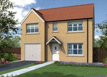 "Thumbnail 4 bedroom detached house for sale in ""The Winster "" at Old Cemetery Road, Hartlepool"