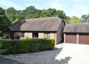 Thumbnail 4 bed detached bungalow for sale in Priors Court Road, Hermitage, Berkshire