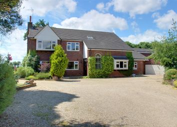 Thumbnail 5 bed detached house to rent in Birch Green, Hertford, Hertfordshire