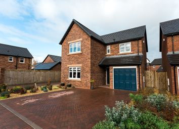 Thumbnail 4 bed detached house for sale in Curlew Drive, Dumfries