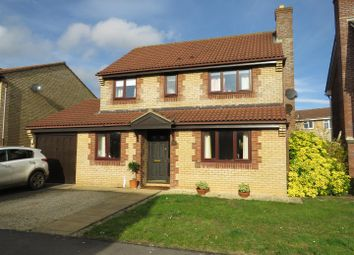 Thumbnail 4 bed detached house for sale in Fox Croft Walk, Chippenham