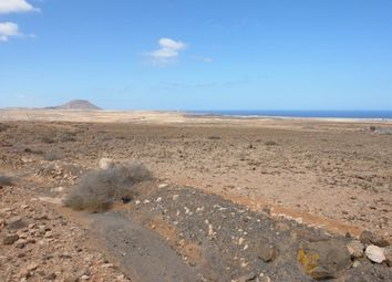 Thumbnail Land for sale in Spain, Fuerteventura, La Oliva, La Caldereta
