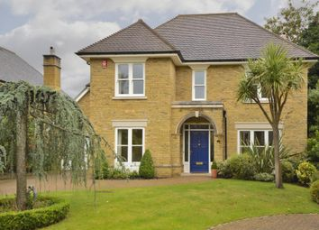 Thumbnail 5 bedroom detached house to rent in Grange Place, Stompond Lane
