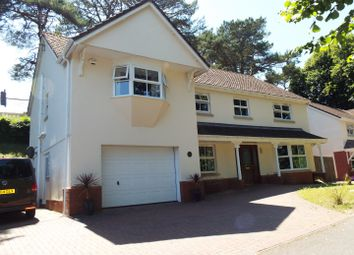 Thumbnail 5 bed detached house for sale in Pinewood Lodge, Uplands, Gowerton, Swansea