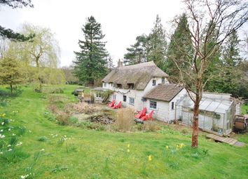 Thumbnail 4 bed detached house to rent in Kilmington, Axminster
