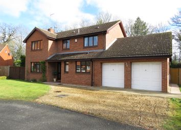 Thumbnail 4 bed detached house for sale in Loder Avenue, Bretton, Peterborough